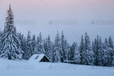 Snowy forest in the Carpathians. A small cozy wooden house covered with snow. The concept of peace