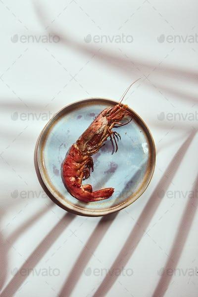 Prepared shrimps on plate on light background