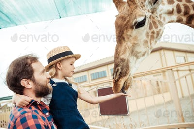 side view of father and little daughter feeding giraffe in zoo