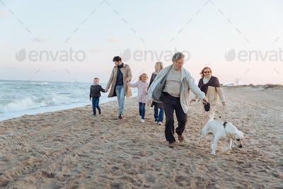 multigenerational family walking with dog on beach at seashore