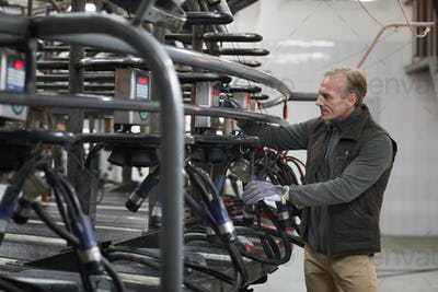 Mature Worker Setting up Milking Machine at Dairy Farm