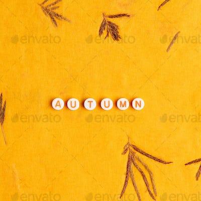 AUTUMN beads message typography