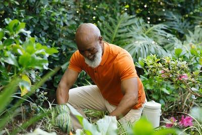 Senior african american man spending time in his garden