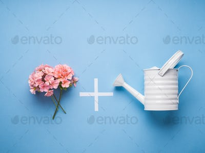 Minimal flat lay with watering concept