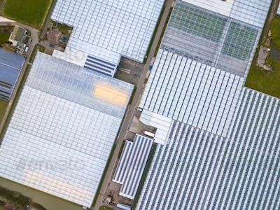 Top down Aerial view of huge Greenhouse horticulture area