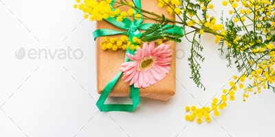 Womans day. Gift box with mimosa flowers