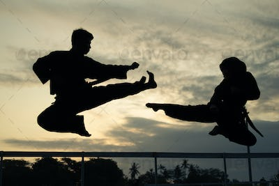 silhouettes of two fighters with kicks drifting