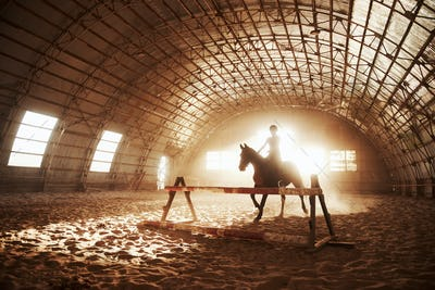 Majestic image of horse horse silhouette with rider on sunset background