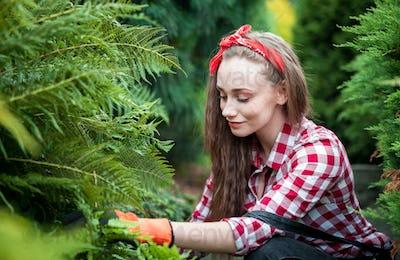 Young gardener girl taking care of ferns in her garden