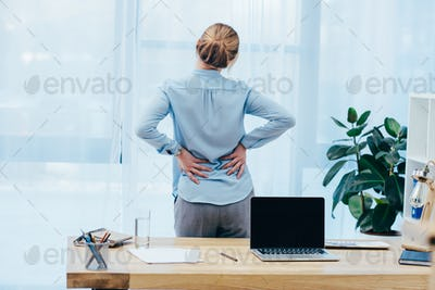 rear view of businesswoman with backplain in office