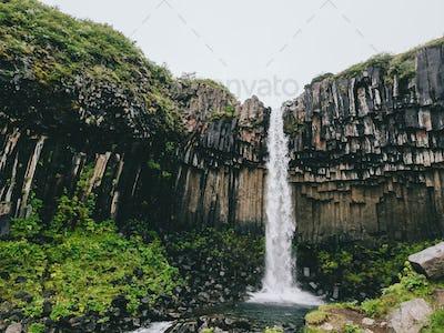 Svartifoss the black waterfall in Skaftafell national park in Iceland