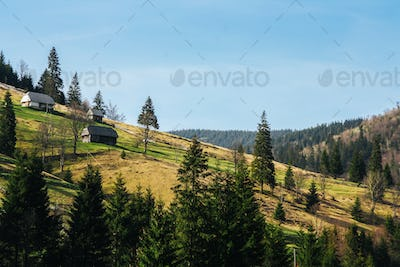 Lovely landscape of green mountain hills covered by forest with small houses.