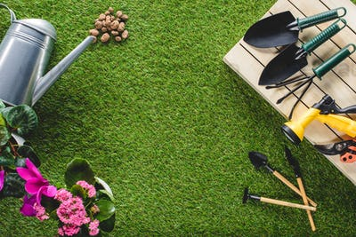 top view of arranged gardening equipment and flowers on grass