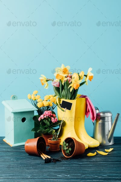 close up view of arranged rubber boots with flowers, flowerpots, gardening tools, watering can and