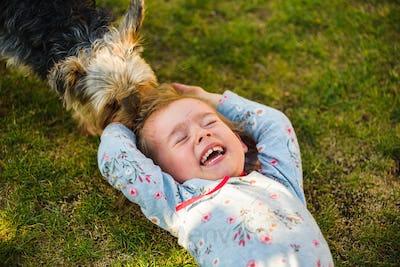 Child with a yorkshire dog ona green grass in backyard having fun