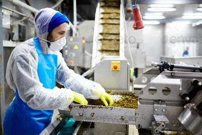Working in seafood factory