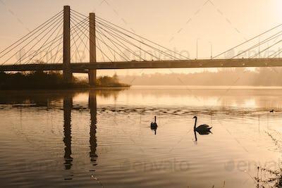 swam on the river, sunrise, bridge in background