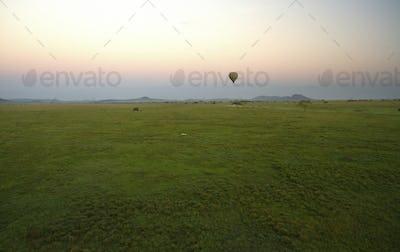 Serengeti np-170