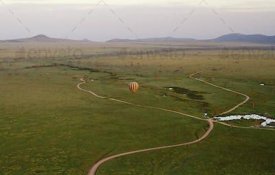 Serengeti np-173