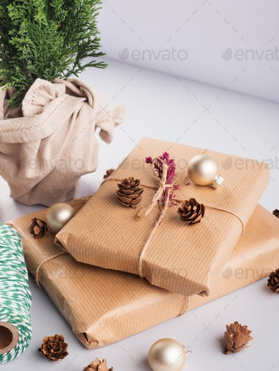 Xmas wrapped gifts stack and tree plant as gift