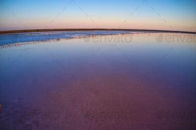 Pink salt lake top view