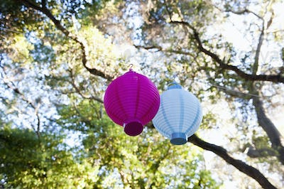 Lanterns Hanging from a Tree.