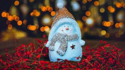 Winter Holidays Decor