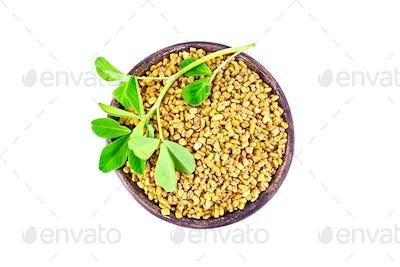Fenugreek with leaf in clay bowl on top