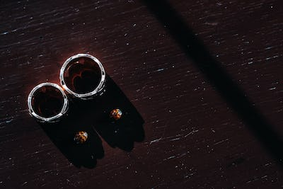 Close-up of two gold wedding rings and two beetles