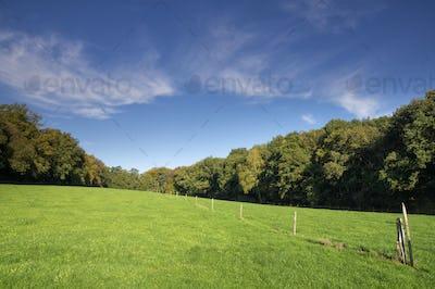 Hilly landscape near Nijmegen