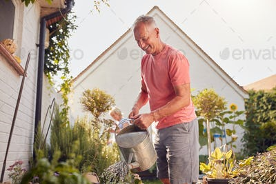 Retired Couple At Work Watering And Caring For Plants In Garden At Home
