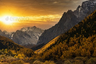 Scene of sunset at The mountain in autumn season in yading nature reserve, Daocheng County