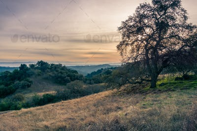 Sunset landscape in Henry W. Coe State Park, south San Francisco bay, California
