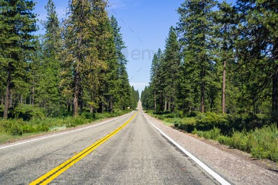 Driving through Shasta National Forest, Siskiyou County, Northern California