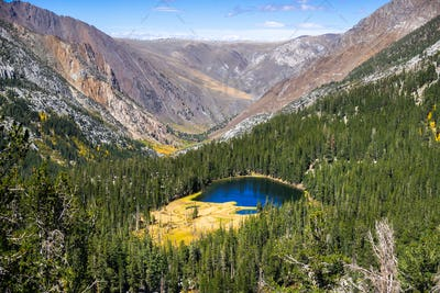 Aerial view Grass Lake surrounded by evergreen forests in the Eastern Sierra mountains, California