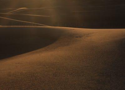 Desert Journeyman