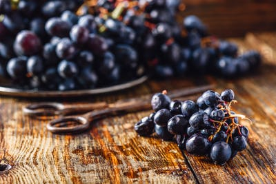 Vine Grapes and Rusty Scissors