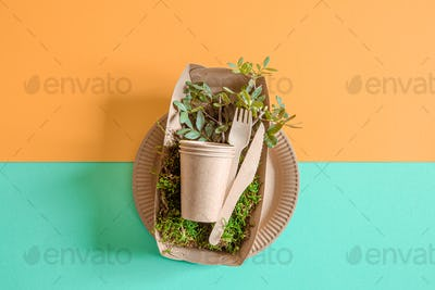 Eco-friendly, disposable, recyclable tableware on a colored background .