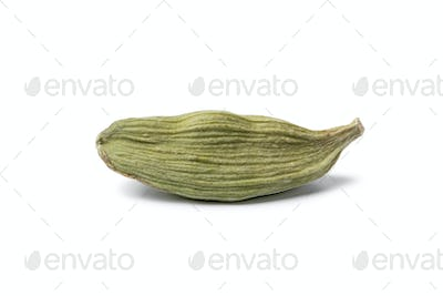 Single green cardamom pod close up isolated on white background