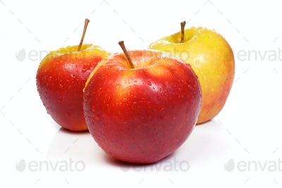 ripe isolated sweet apples