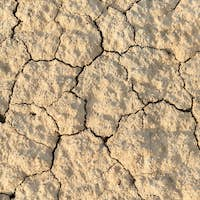 Dry surface of the ground