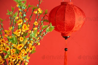 Decorations for spring festival