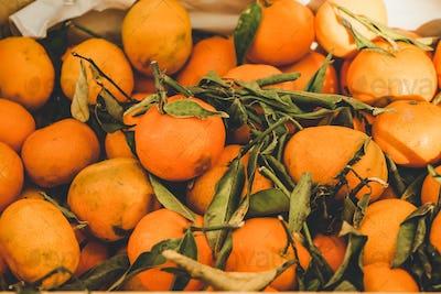 Valencia, Spain, delicious seasonal clementines