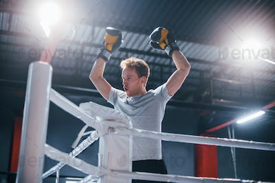 Man in protective gloves and in white shirt celebrating victory on boxing ring