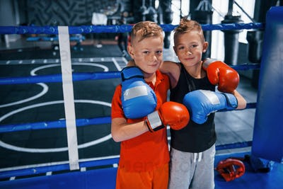 Portrait of two young boys in protective gloves standing together on boxing ring