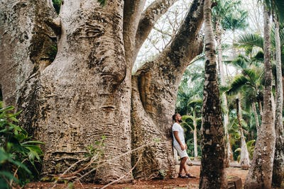 A man next to a baobab tree in a botanical garden on the island of Mauritius