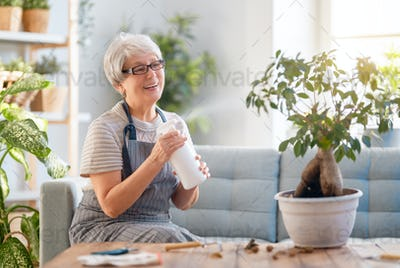 Woman caring for plants