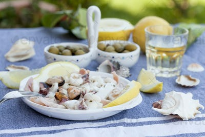 traditional mediterrenian appetizers with olives, figs and white wine