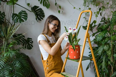 Smiling woman gardener taking care for orchid in red milk can standing on stepladder. Home gardening