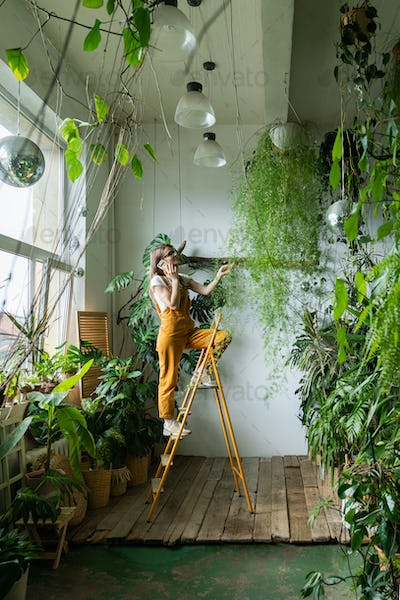 woman gardener touching asparagus fern houseplant at home, standing on stepladder, talking on phone